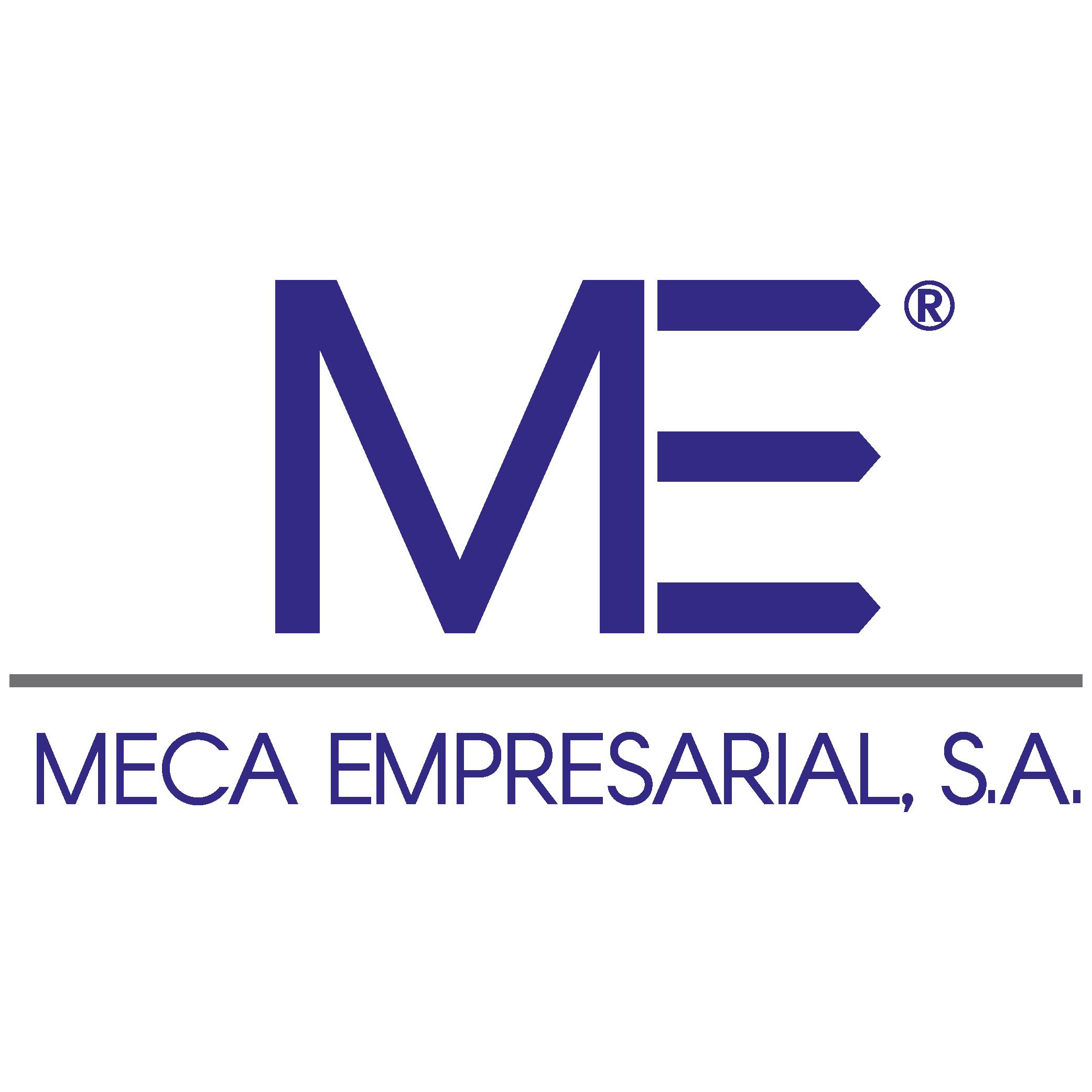 Copia de MECA Empresarial